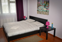 Стандартныйномер двуспальной кроватью + диван-кровать